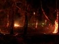incendiocampodimare2