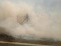 incendio palo ladispoli foto francesca carlomagno