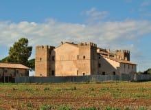ladispoli_(rm)_-_loc._monteroni_-_il_castellaccio_-_foto_di_g._garofoli_(09-2010)_