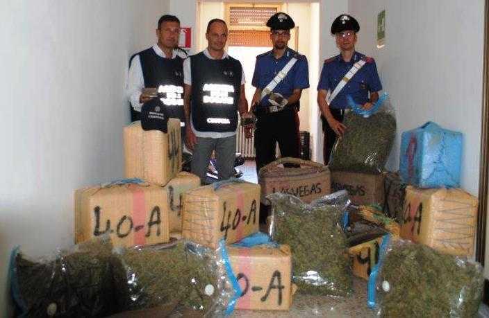 Maxi sequestro di droga al Porto di Civitavecchia, arrestato camionista