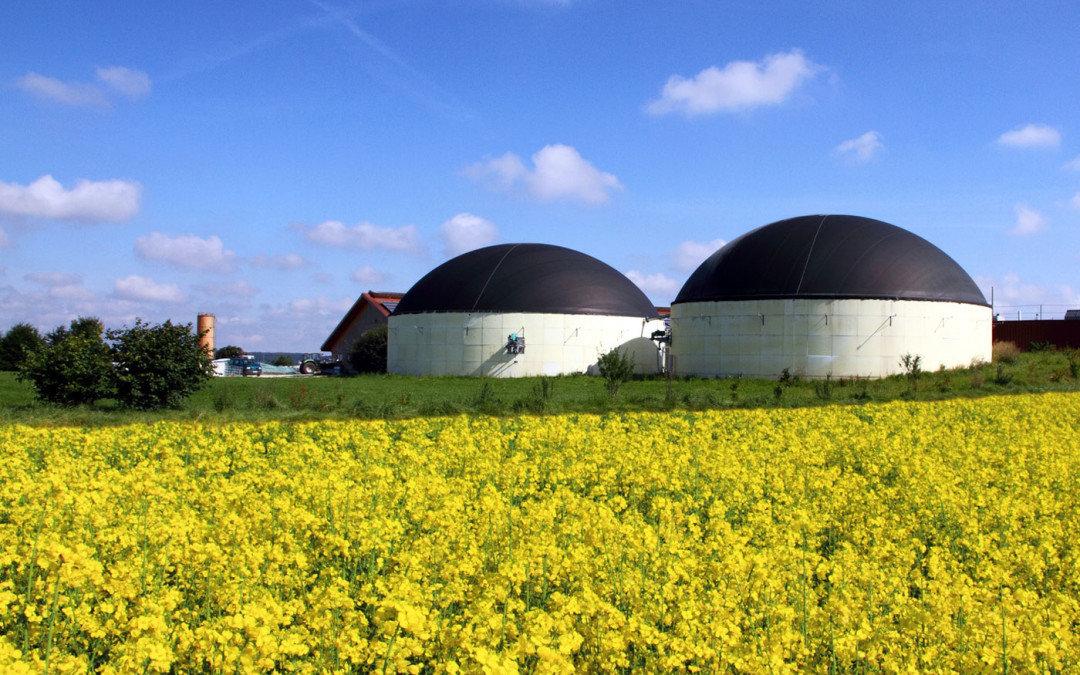 Tarquinia,  i cittadini dell'Olivastro lanciano il pericolo biogas