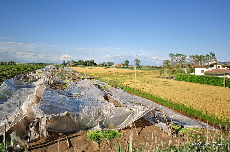 Danni tornado, il 21 marzo incontro con gli agricoltori