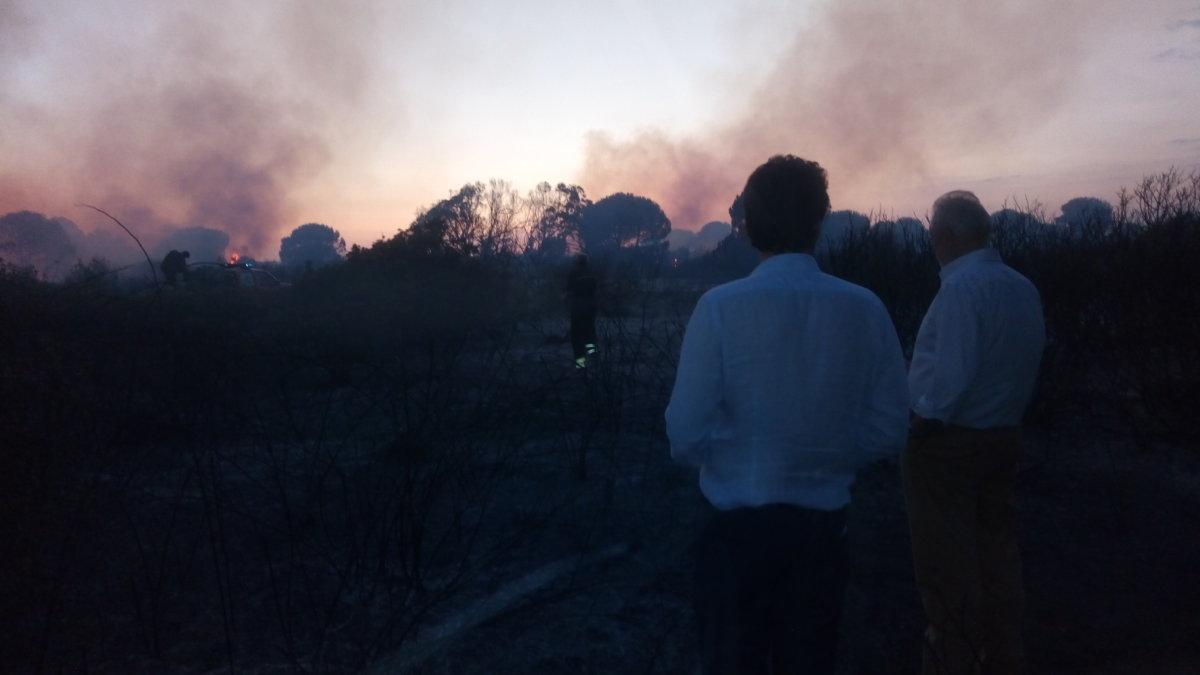 """Incendio alla pineta di Focene, Montino: """"Creare un presidio fisso dei VVF sul nostro territorio"""""""