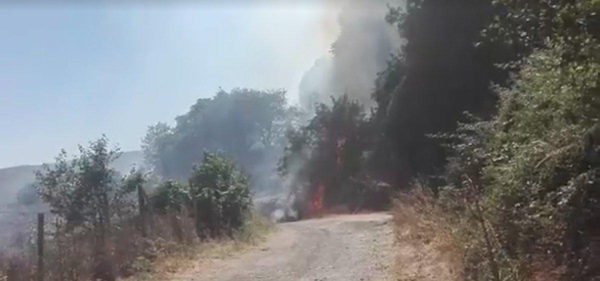 Incendio a Vejano, in fiamme la vallata