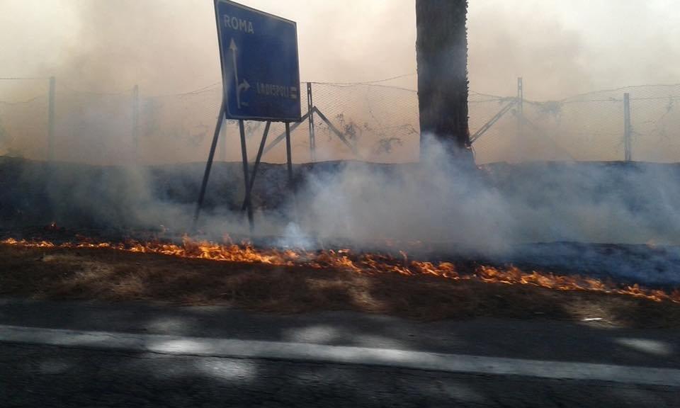 Ladispoli, le fiamme non risparmiano l'oasi del Wwf