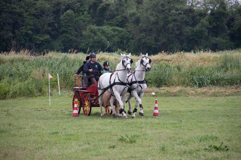 Etruria, a cavallo tra turismo equestre e sport