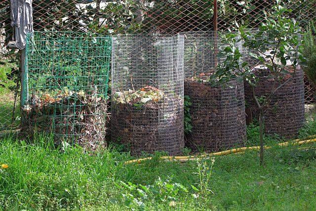 Canale Monterano aderisce al compostaggio