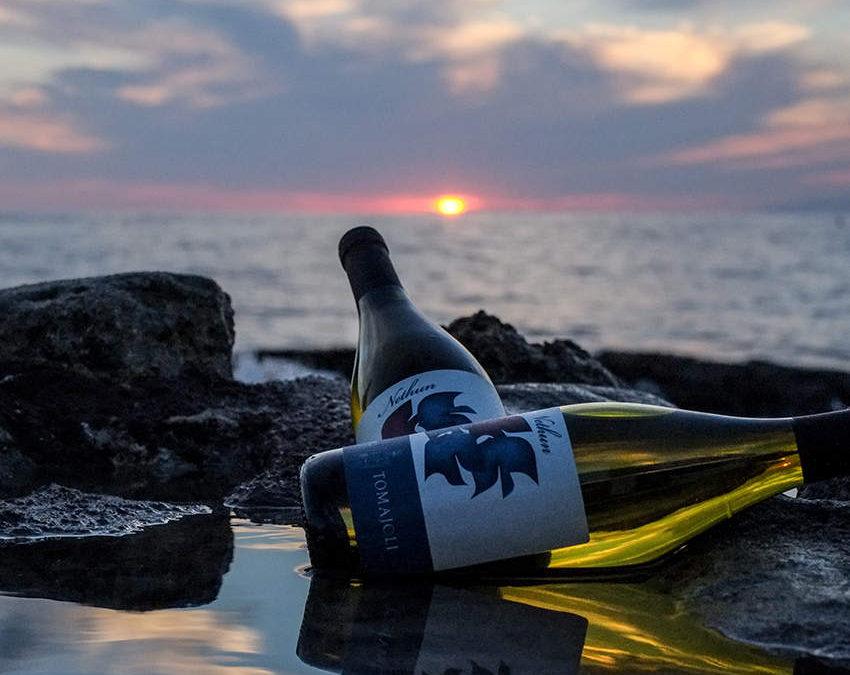 Tarquinia, I vini dell'azienda Muscari Tomajoli arrivano a Boston