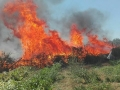 incendio civitavecchia 5