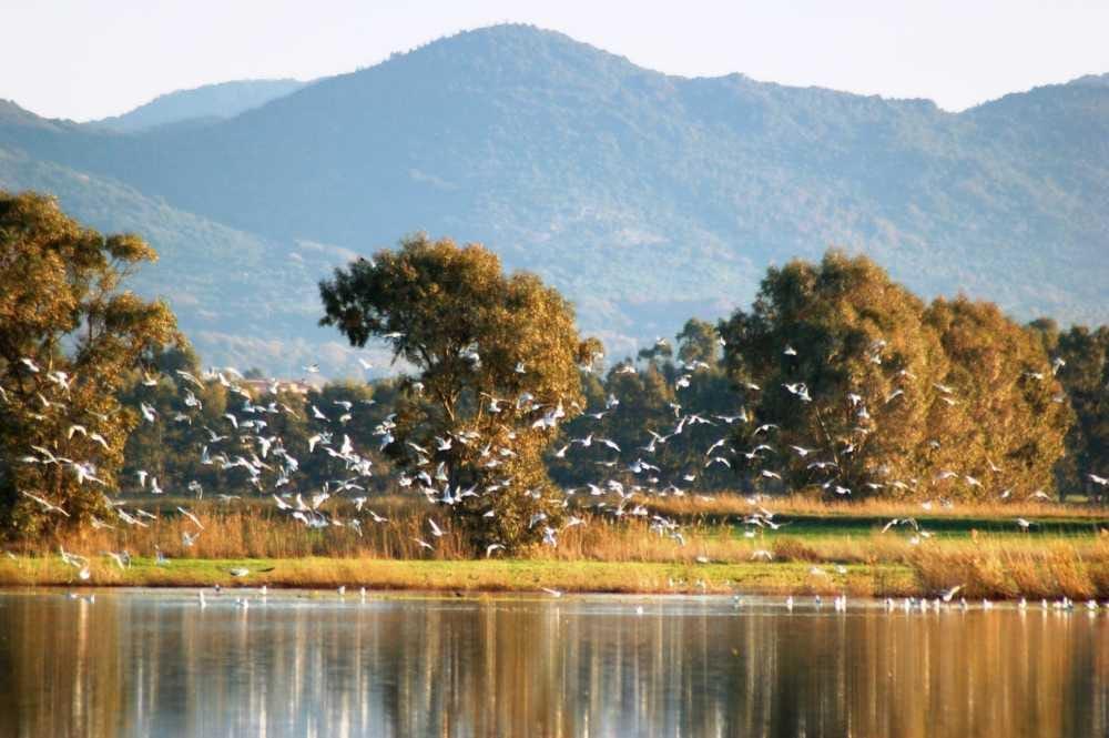 Canale Monterano, riscritta la carta degli usi civici con l'Analisi Territoriale
