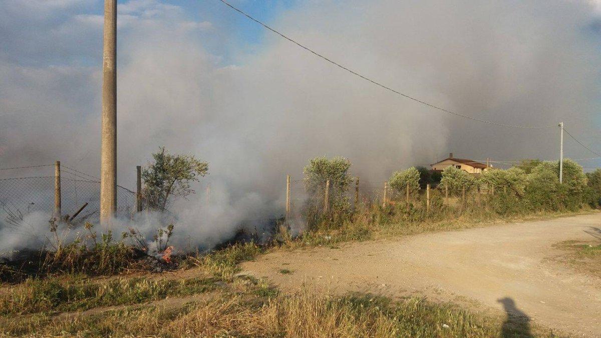 Ladispoli, incendio in un campo tra il Cerreto e l'Aurelia