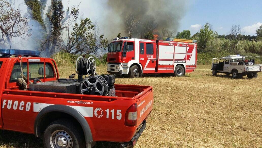 Civitavecchia, fiamme a Zampa d'Agnello. Pompieri e Prociv al lavoro