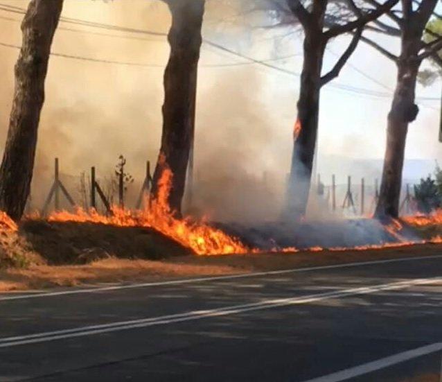 Altro vasto incendio a Palo: bloccata uscita sud di Ladispoli