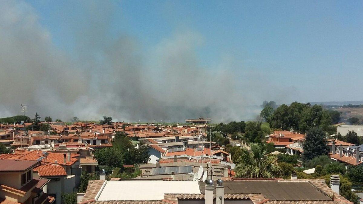 Ladispoli, nuovo incendio a Pizzo del Prete