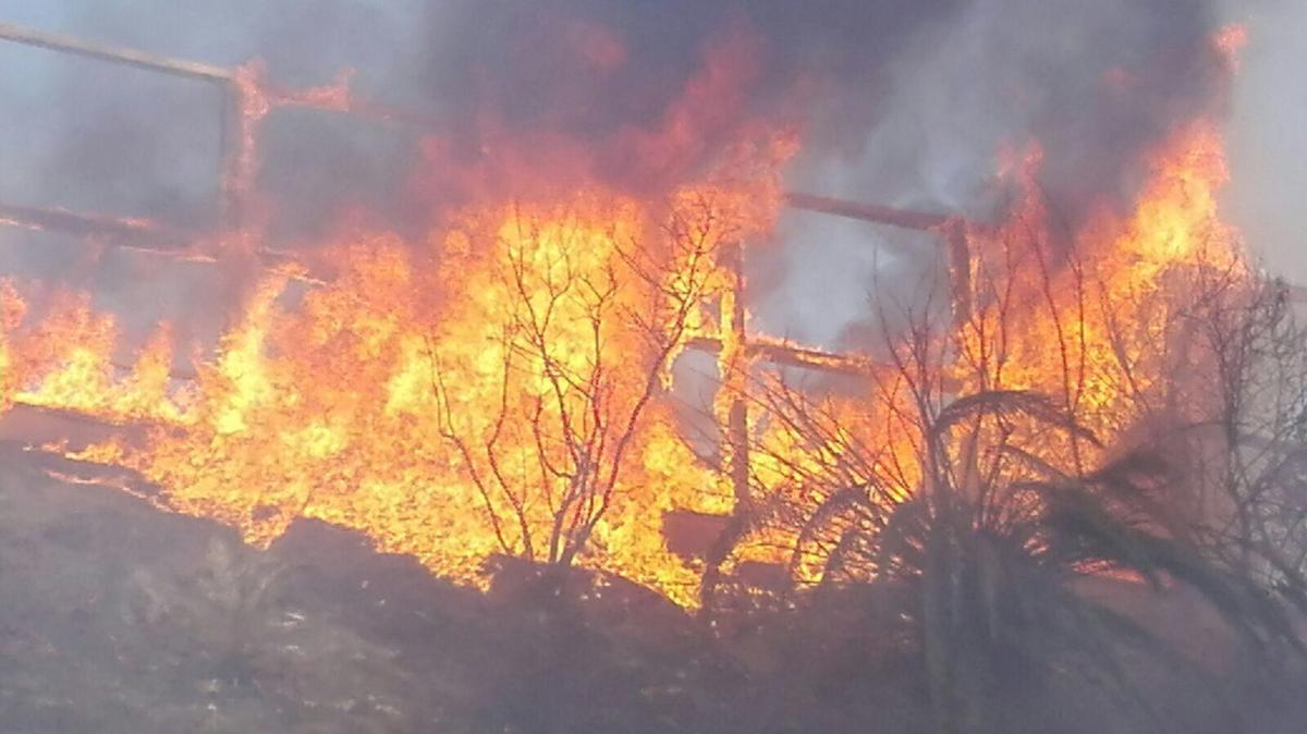 Ladispoli, ordinanza antincendio del sindaco