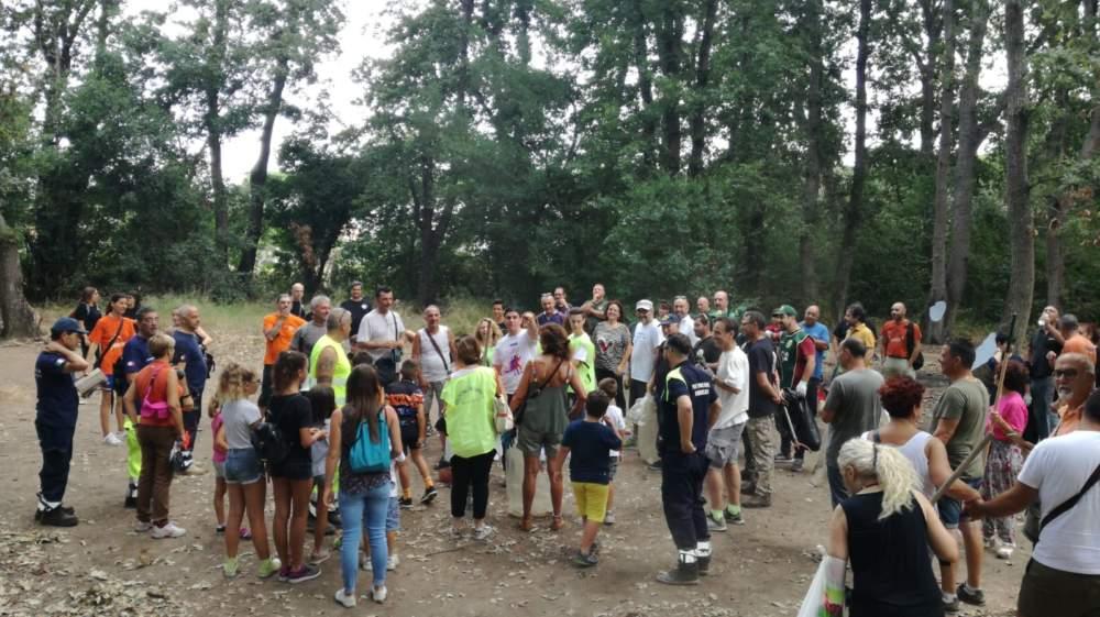 Al via la pulizia del bosco di Palo: rimossi detriti, siringhe e altri rifiuti
