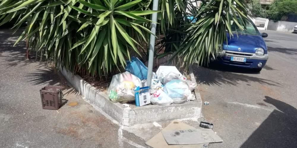 Cerveteri, rifiuti non conferiti: stangate di Comune e Guardie Ecozoofile