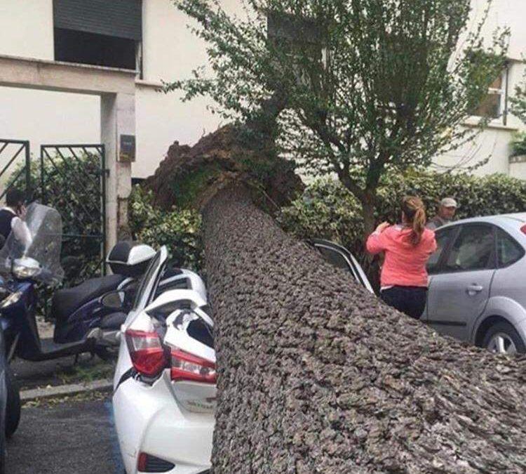 Vittime del maltempo: tre morti nel Lazio e uno in Campania