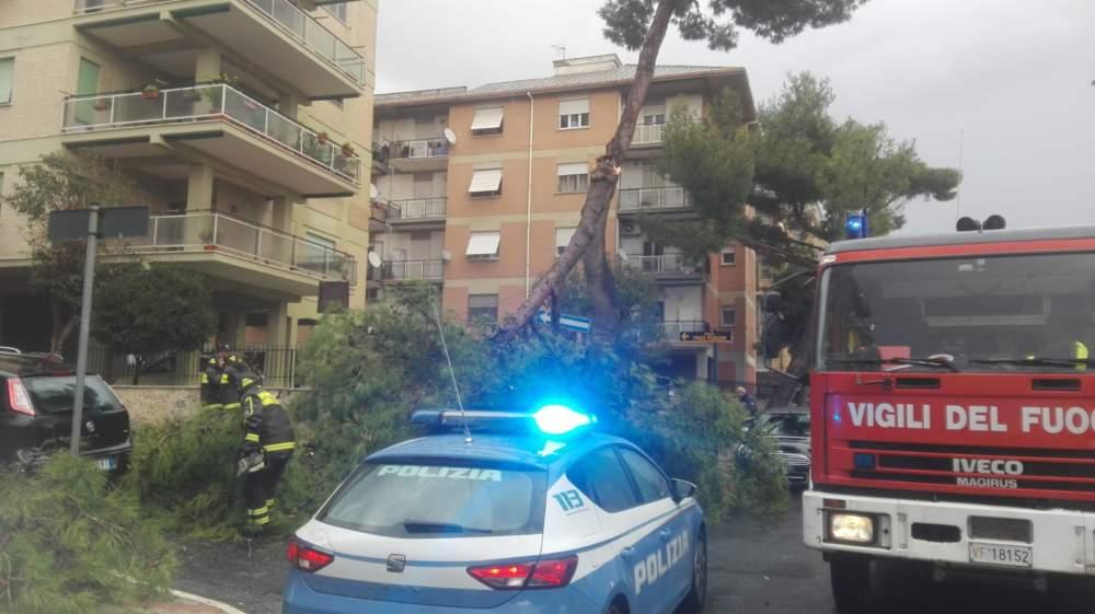 Maltempo, un ramo si abbatte sul marciapiede: pompieri e polizia sul posto, auto danneggiata