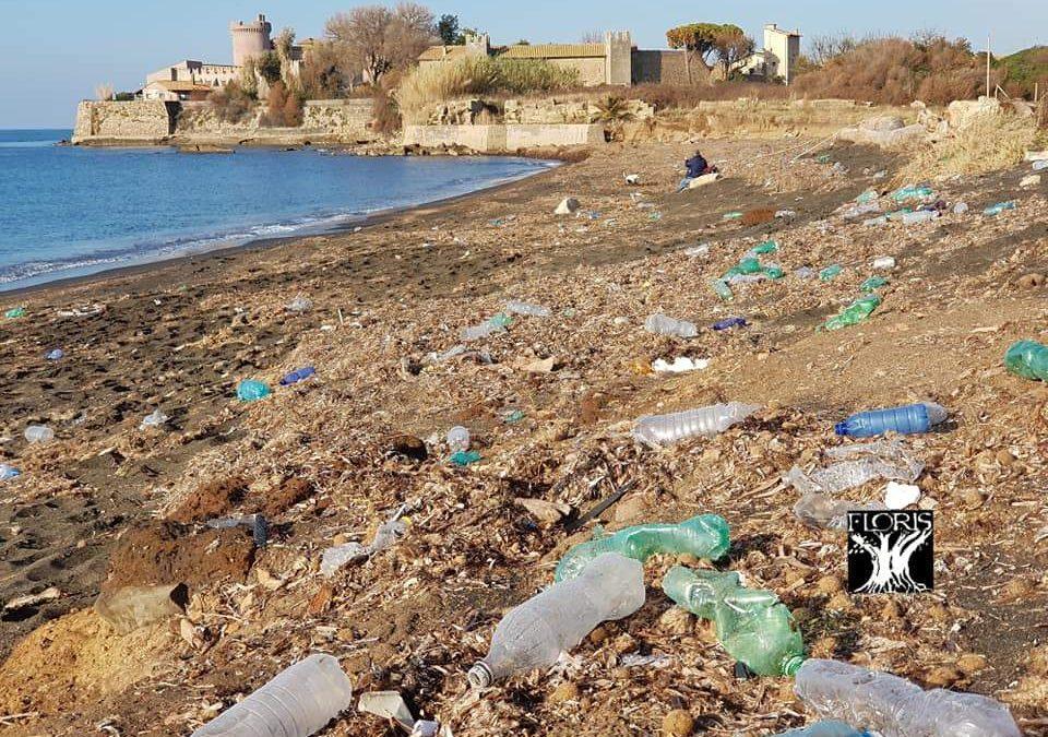 Lazio Plastic Free: fondi per le spiagge pulite a Civitavecchia, Cerveteri, Ladispoli, Fiumicino e Santa Marinella