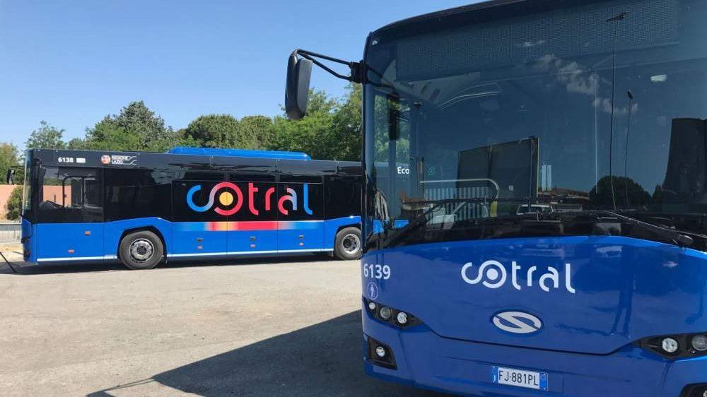 Corse Cotral saltate fra Civitavecchia, Tarquinia e Montalto: disagi e utenti infuriati