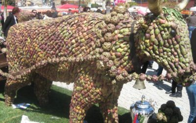 toro sagra carciofo Ladispoli