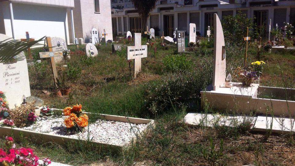 Santa Marinella, al cimitero l'8 luglio il ciclo di esumazioni ordinarie