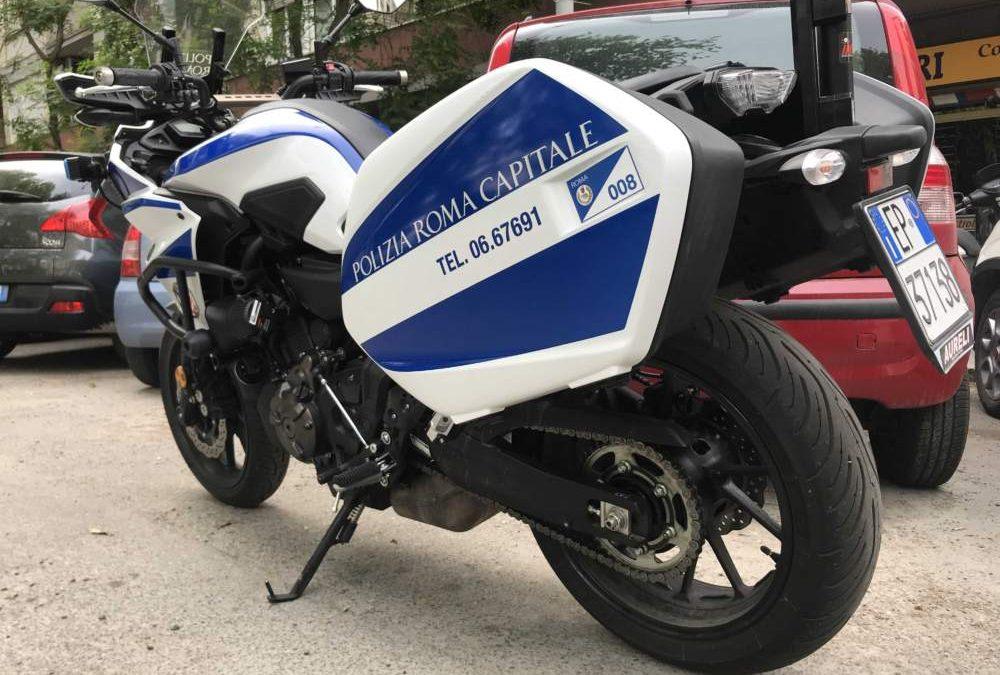 Ostiense, cavallo contro moto: la Prc denuncia custode e proprietario