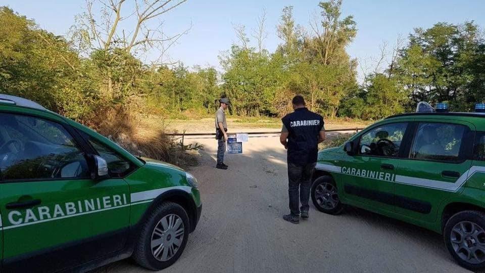 Alberi tagliati a Bracciano, Italia Nostra scrive ai Forestali