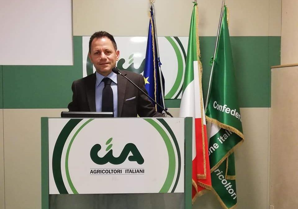 """Carciofi, la Cia: """"Cerveteri e Ladispoli contente per la produzione 2019"""""""