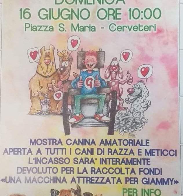 """Cerveteri, in Piazza Santa Maria """"I nostri Amici a 4 Zampe per Giammy"""""""