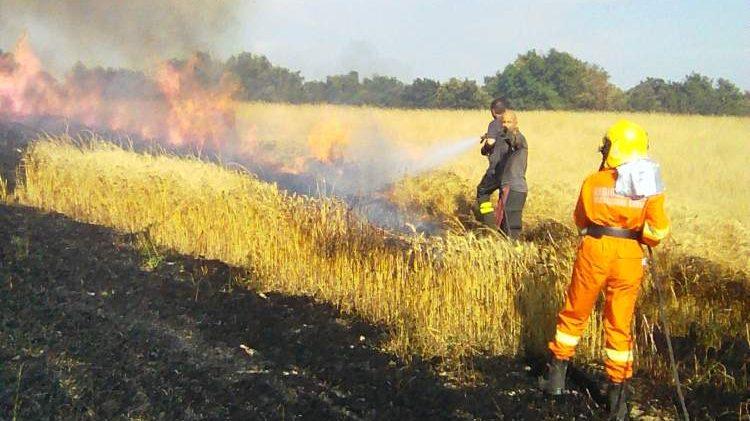 Incendio a Boccea, Avab Bracciano a supporto