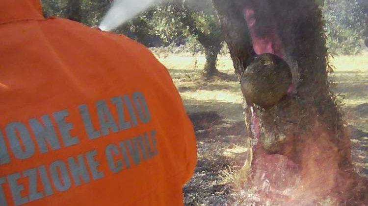 Incendi a Bracciano e Boccea: Avab al lavoro