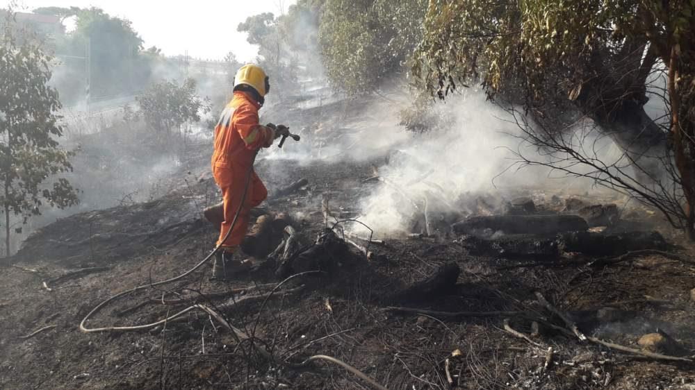 Tarquinia, incendio a Pantano domato da pompieri e Aeopc