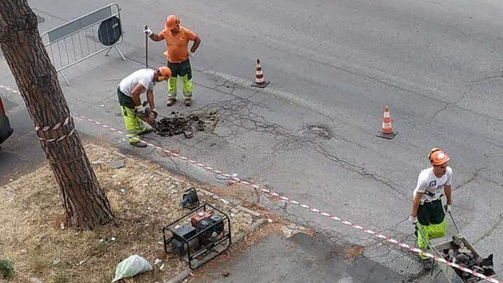 """Civitavecchia, il M5s: """"Lavoro nostro la rimozione delle radici da via Montanucci"""""""