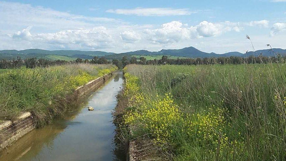 Santa Marinella, 86mila euro dalla Regione per Macchiatonda