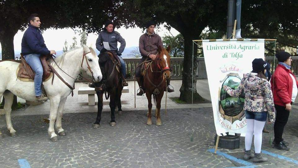 """Pd Tolfa sull'UniAgraria: """"Da Santa Severa Nord sapranno scegliere il loro rappresentante"""""""