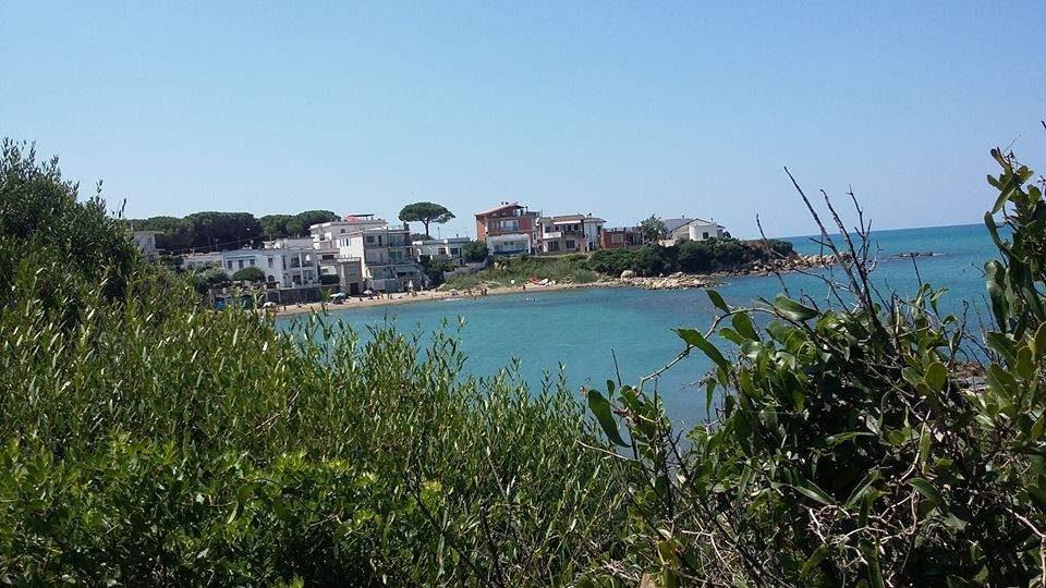 "Sant'Agostino, Scilipoti: ""Tedesco non ha tutelato i civitavecchiesi"""