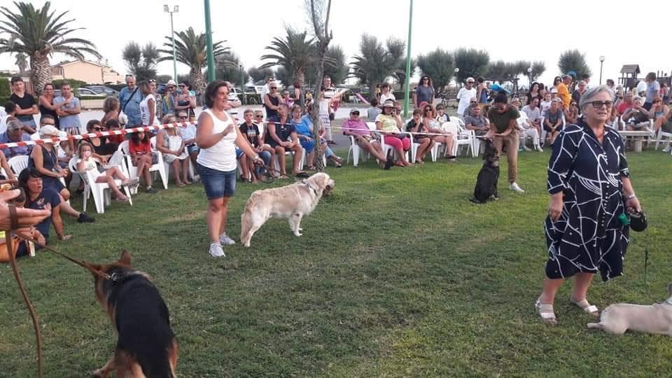 Tarquinia, a Marina Velka l'esposizione canina