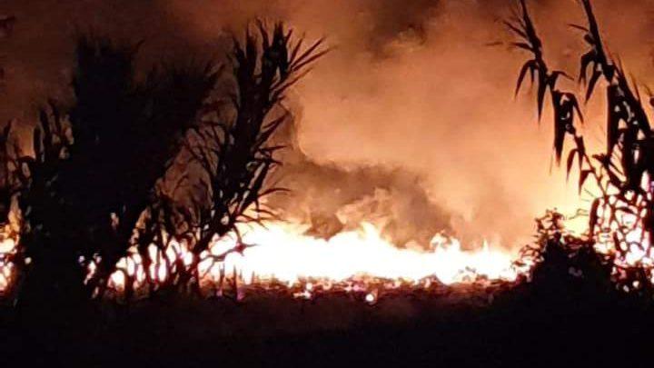 Inferno di fuoco sul Monte Tuscolo, indagini sull'incendio