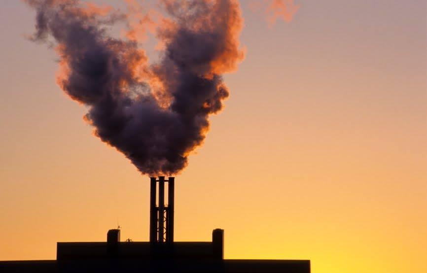 """Monnezza Capitale, Anima Verde Ladispoli: """"La Lega esulta perché vuole gli inceneritori"""""""