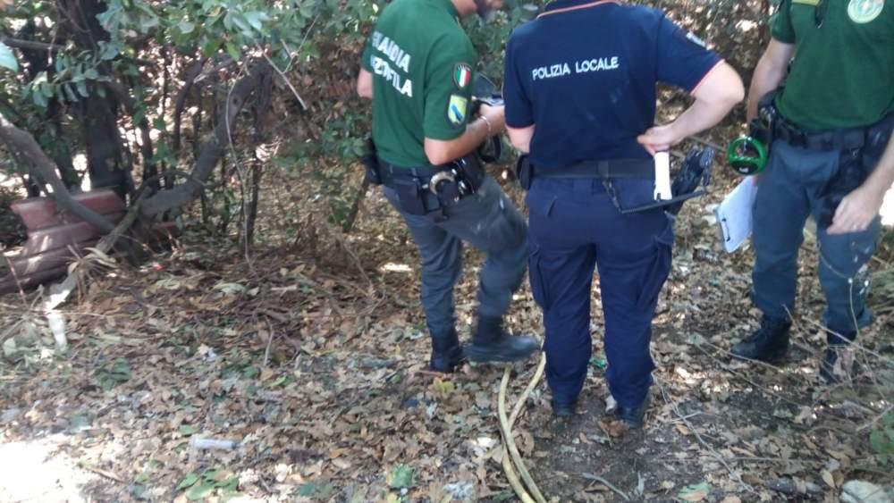 Cerveteri, canile abusivo: blitz di Polizia Locale e Guardie Ecozoofile
