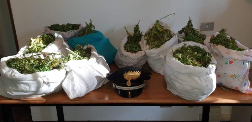 Nasconde l'erba nelle federe dei cuscini: arrestata 48enne di Ladispoli