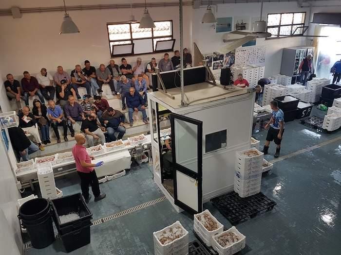 Asta del pesce a Fiumicino, riapertura record: battute  1319 cassette per oltre 5 tonnellate di pescato