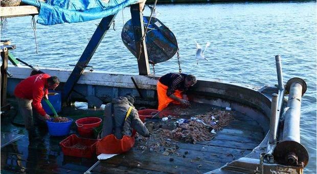 Ladispoli sfratta i pescatori: notifica di sgombero della Guardia Costiera per Porto Pidocchio