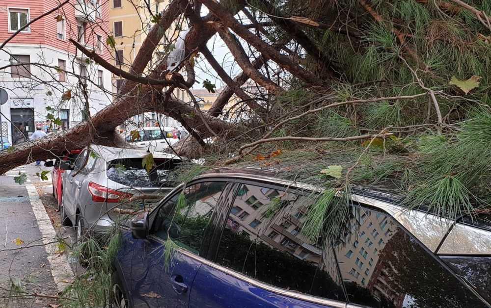 Maltempo a Roma: allagamenti, caduta rami e incidenti