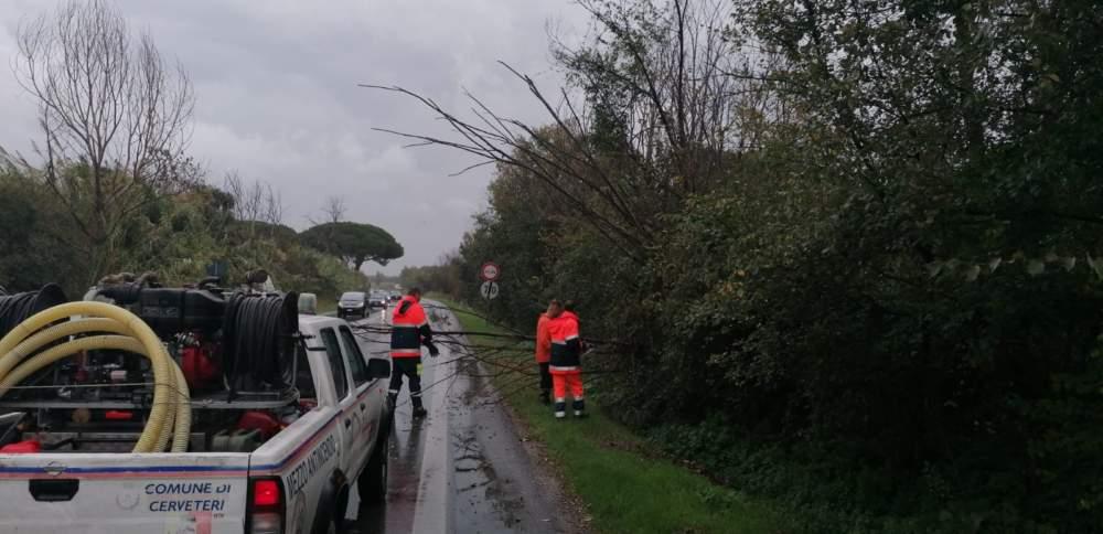 Nubifragio Cerveteri, alberi caduti: interviene la Prociv - TerzoBinario.it
