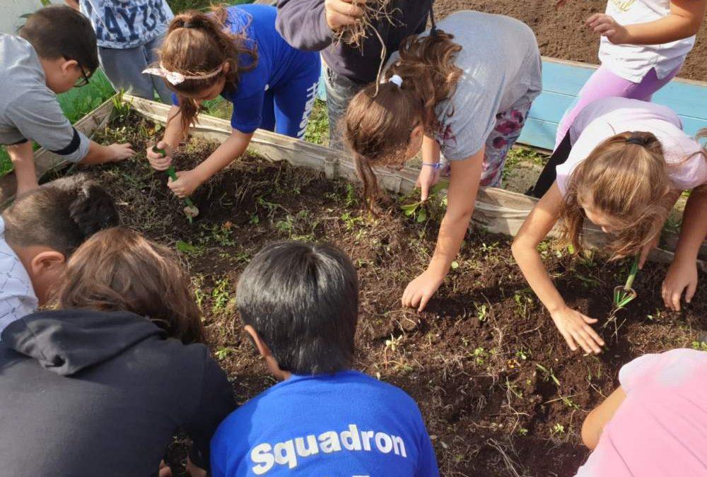 Ladispoli 1, l'Orto dei Gianni fa coltivare i ragazzi