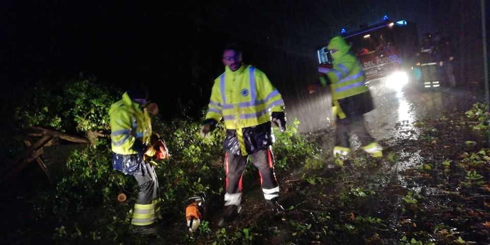 Albero cade sulla Braccianese: rimosso da Prociv e vigili del fuoco