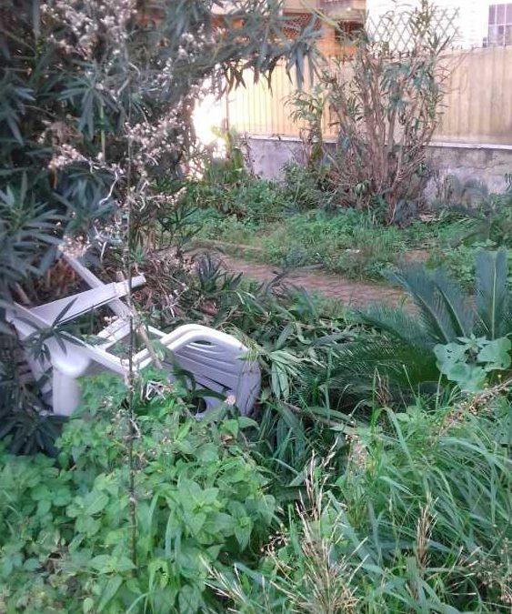 Ladispoli, degrado nei giardini dietro la stazione